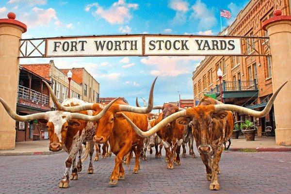Historic Fort Worth TX Stockyards