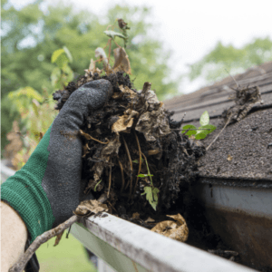 Fall Clean up Clean Gutters