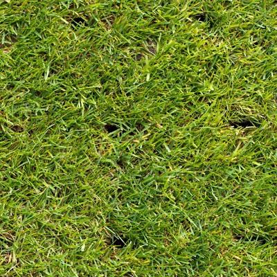 Core aeration in Texas