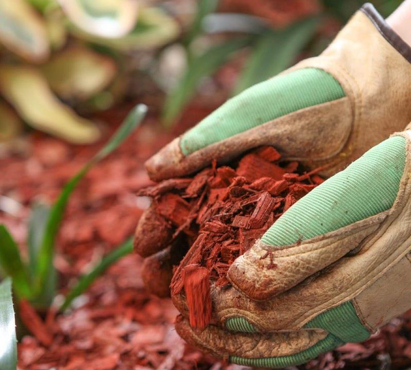spring landscaping, mulching