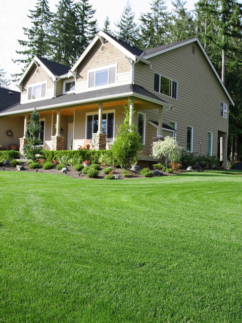 Trust Gro Lawn for their meticulous pest control program