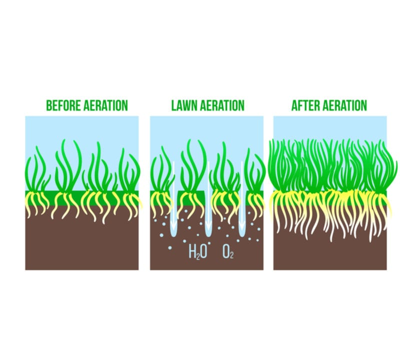 Get the best results possible with yard aeration.