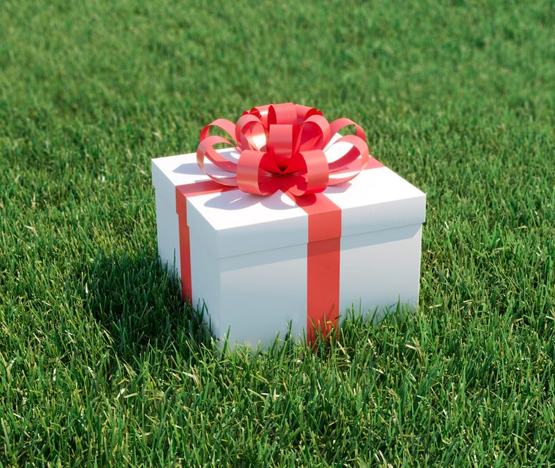 White gift box with a red bow