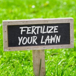 One of the best lawn care goals for 2020 is to sign up for a lawn care and fertilization program from Gro Lawn.