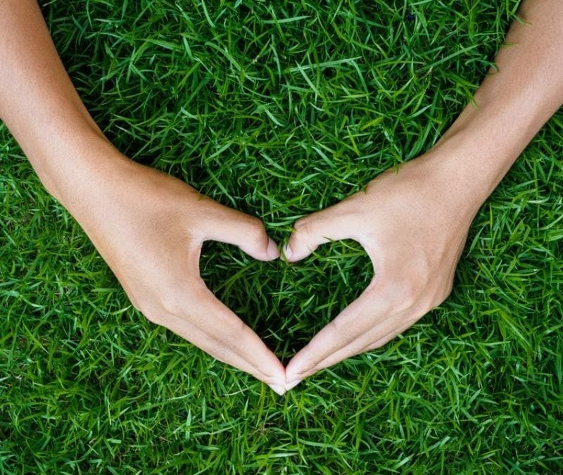 Hands in the shape of a heart on the grass