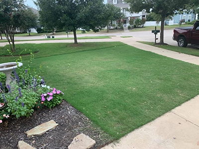 lawn before scalping